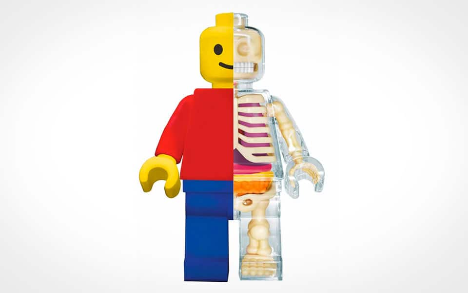 Brick Man Anatomical Puzzle